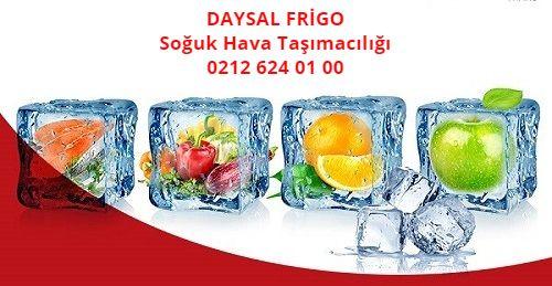 Daysal Frigo - Yüklerimiz